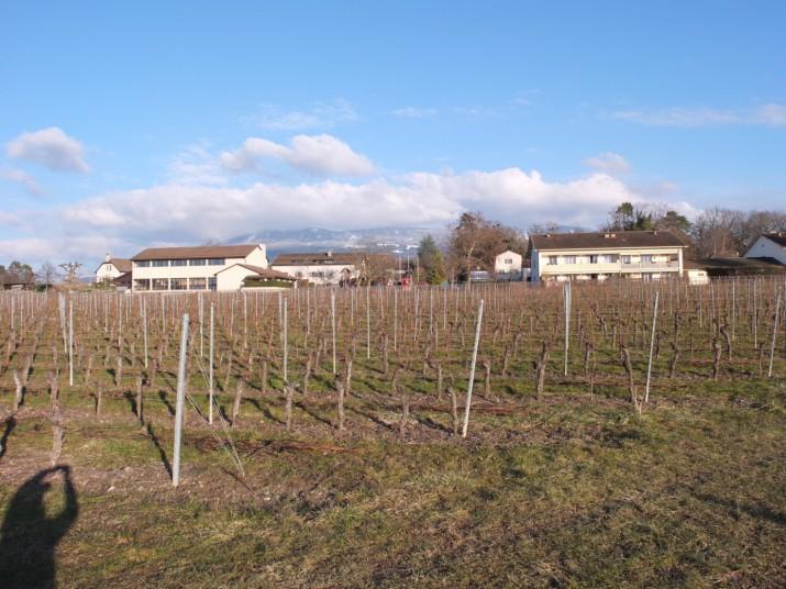 Projet de l'écovillage de Presinge
